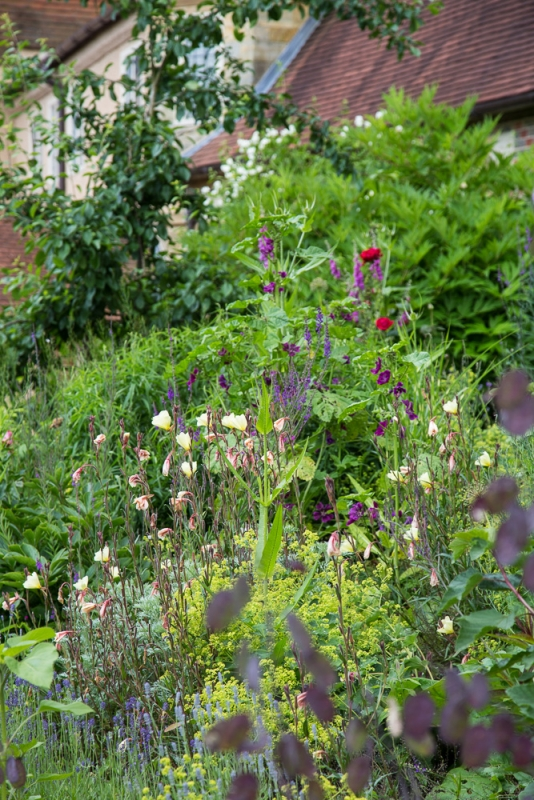 Standen June 2016 (20 of 30)
